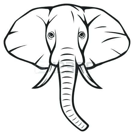 446x450 Elephant Outline Drawing
