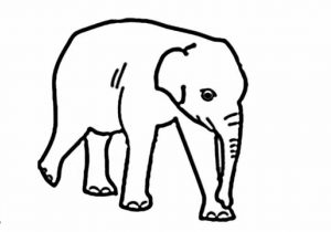 300x210 Easy Sketches Of Elephants Easy Drawing Elephant At Getdrawings