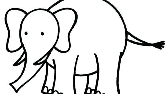 570x320 Elephant Drawing Outline