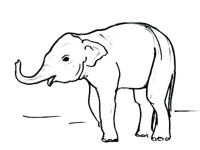 400x300 Dragon Drawing Easy Baby Drawing Easy How To Draw A Baby Elephant