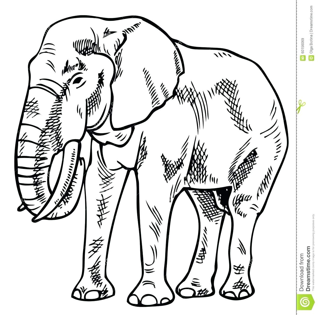 1312x1300 Simple Sketch Of Elephant