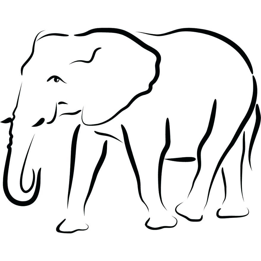 878x878 Outline Elephant Elephant Drawing Outline Tiny Elephant Outline