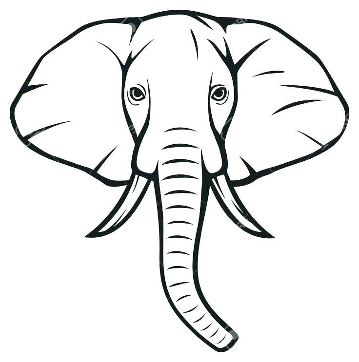 736x743 Outline Elephant Outline Of A Elephant Elephant Outline Tattoo