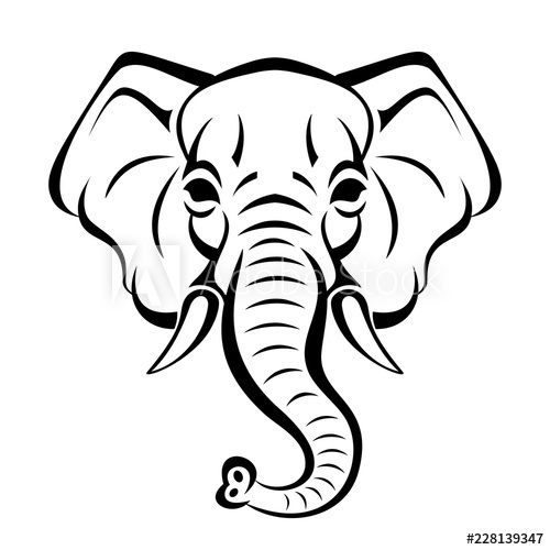 500x500 Vector Beautiful Elephant Face Tattoo Sketch Or Template For Print