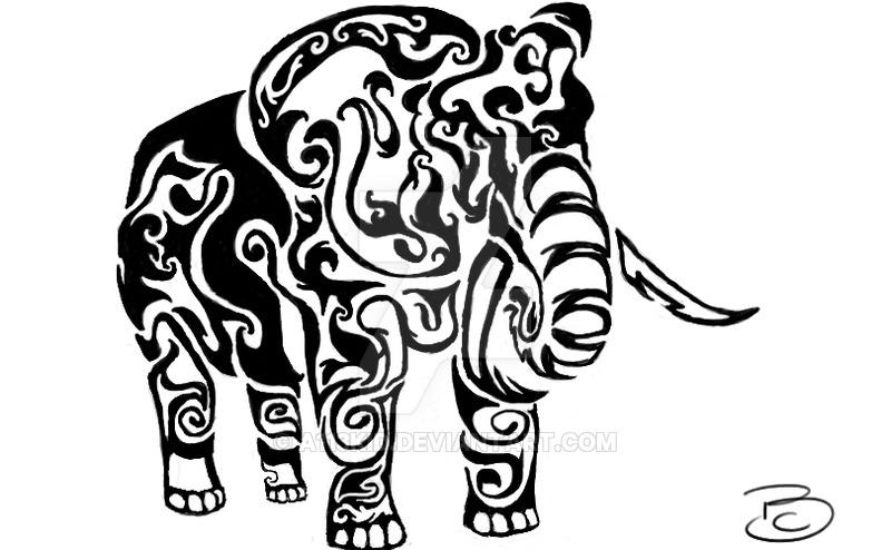 800x494 Elephant Tribal