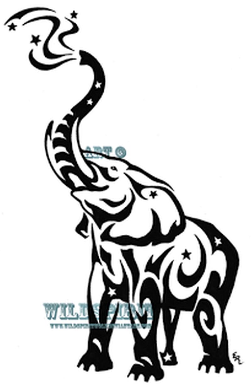 800x1249 Starry Tribal Elephant Tattoo Art