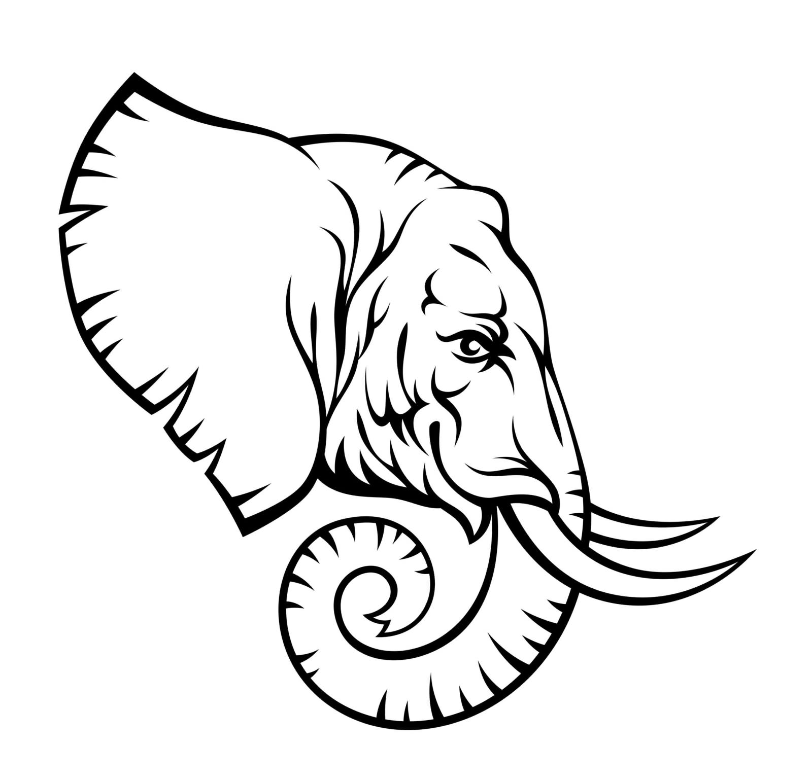 1600x1540 Tribal Elephant Head Drawing