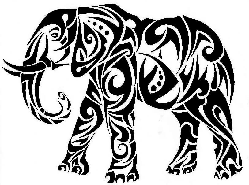 813x605 Black Ink Famous Tribal Elephant Tattoo Sample Truetattoos