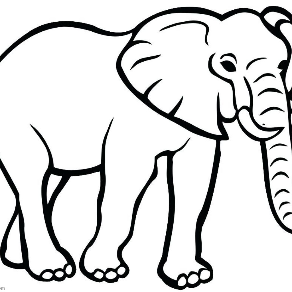 1024x1024 Elephant Outline Drawing Apple Clipart House Clipart Online Download