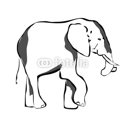 400x400 Big Elephant In Black And White Colors Wall Mural Wheel