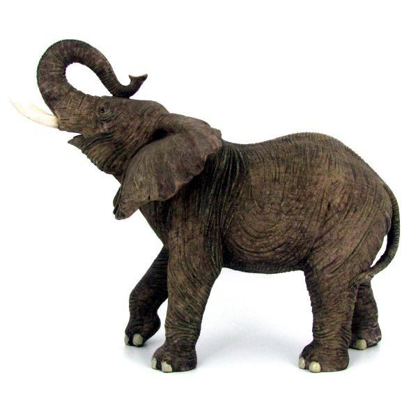 600x600 African Elephant Profile With Tusks Animals! Elephant
