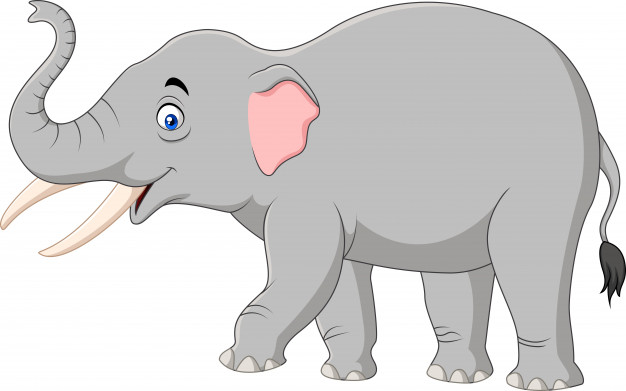 626x391 Elephant Vectors, Photos And Free Download