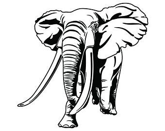 340x270 Elephant Trunk Etsy