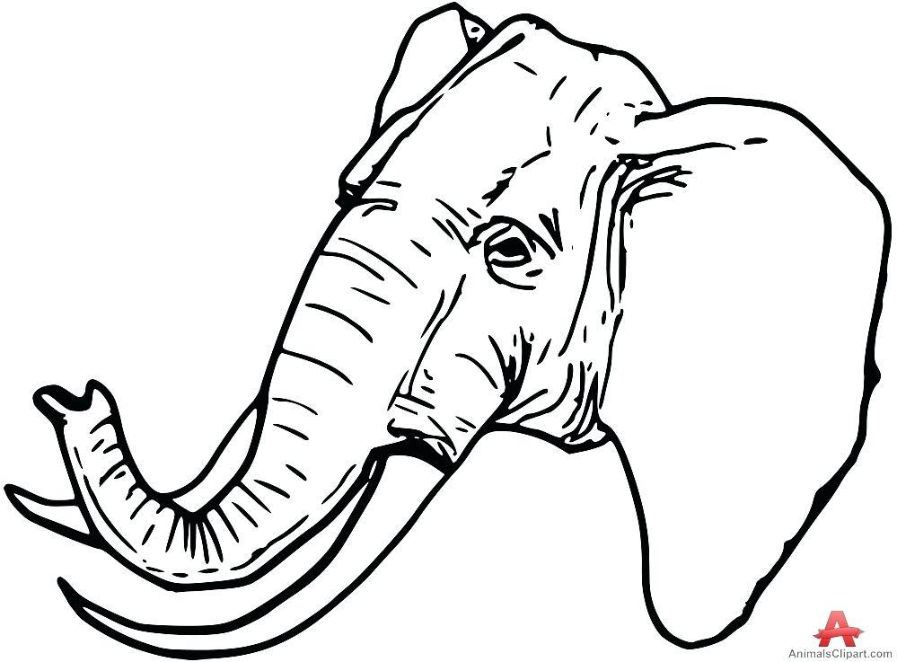 999x737 Outline Of Elephant Elephant Head Outline Drawing Indian Elephant