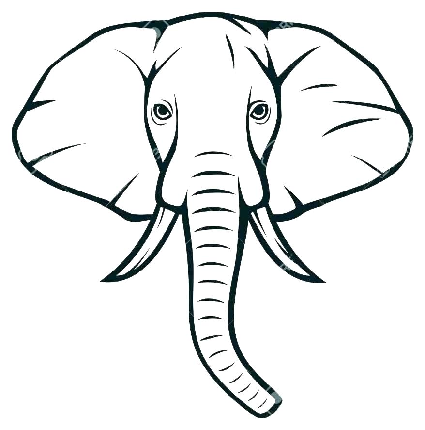 878x887 Outline Of Elephant Outline Elephant Vector Premium Vector