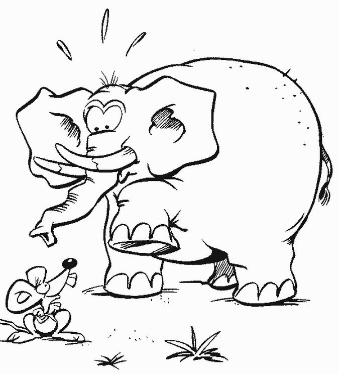 Elephant Eye Drawing