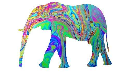 500x281 Tumblr Clipart Elephants, Free Download Clipart
