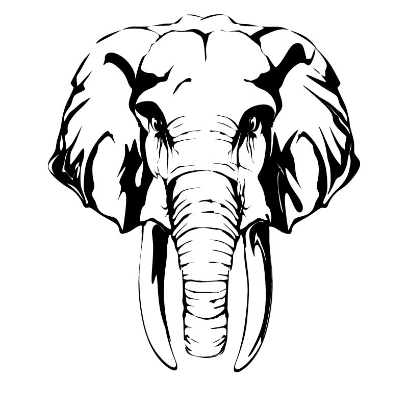800x800 Indian Elephant Silhouette Clip Art Black And White Ideas