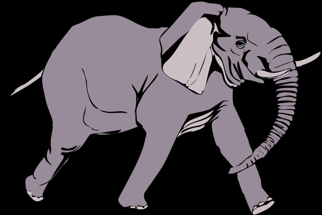 1122x750 African Bush Elephant Elephants Indian Elephant Drawing Mammal Cc0