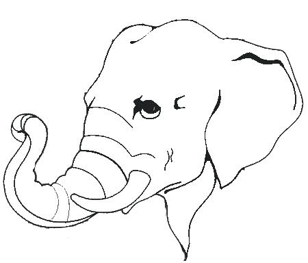 450x384 Free Outline Of Elephant Face Download Free Clip Art Free Clip Art