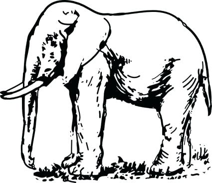 425x368 Outline Elephant Download Elephant Drawing Clip Art Vector Free