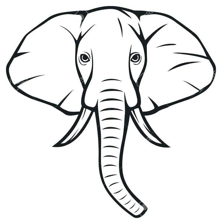 736x743 Outline Image Of Elephant Google Search Big Outline Image