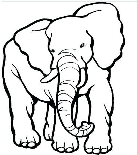 472x532 Outline Of A Elephant Best Y Blank Pattern Elephants Images