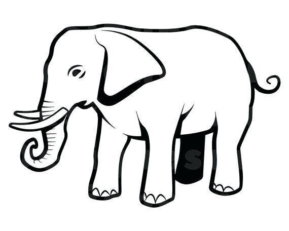570x456 Outline Of Elephant Image Elephant Outline Drawing Free