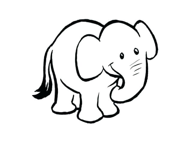 640x480 Outline Of Elephant Vector Outline Elephant Illustration Isolated