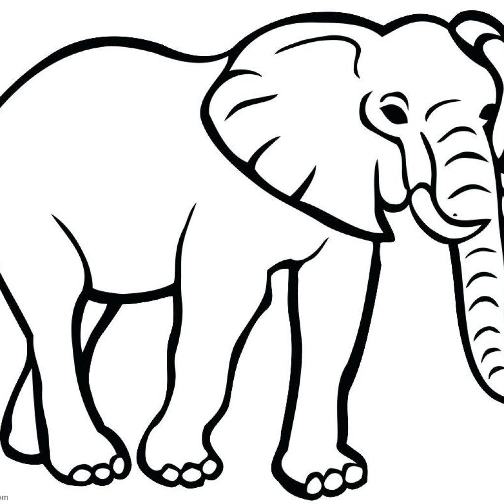 1024x1024 Elephant Clipart Outline