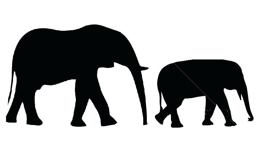 854x477 Elephant Drawing Outline Elephant Outline