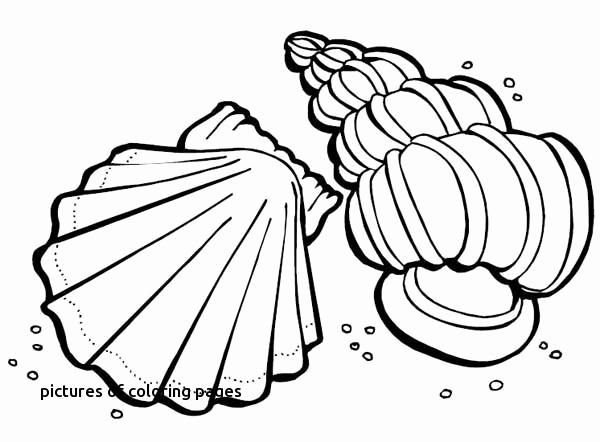 600x442 Elephant Coloring Book Unique Photos First Adult Coloring Book