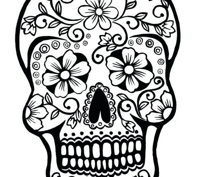 678x600 Sugar Skull Pictures Color Simple Sugar Skull Drawing