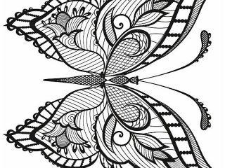 320x240 Butterfly Coloring Sheet Butterfly Coloring