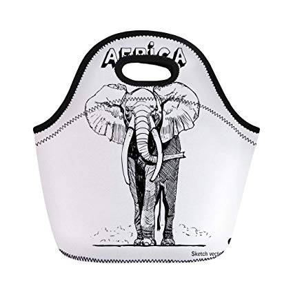 425x425 Semtomn Lunch Tote Bag Animal African Elephant