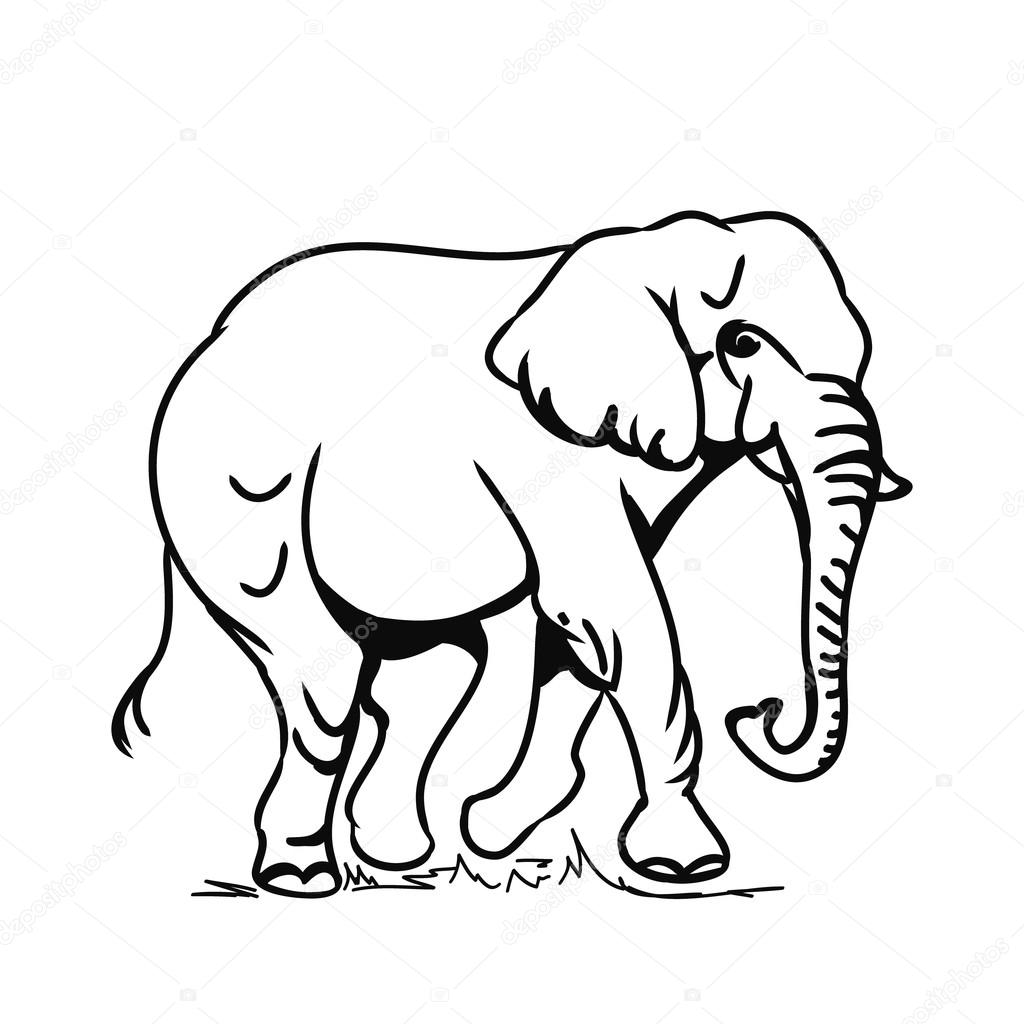 1024x1024 Contour Drawing Elephant For Free Download