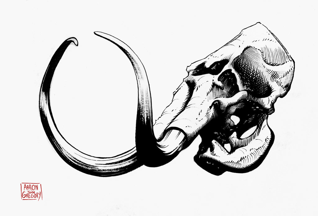 1024x697 Skull Drawing Elephant For Free Download
