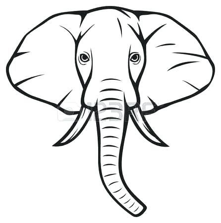 446x450 Outline Of A Elephant Best Y Blank Pattern Elephants Images