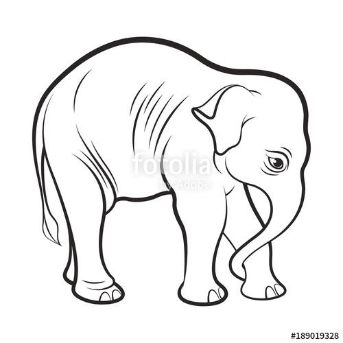 500x500 Baby Elephant Drawing