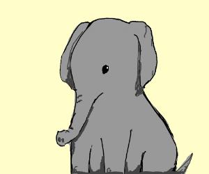 300x250 Sitting Elephant