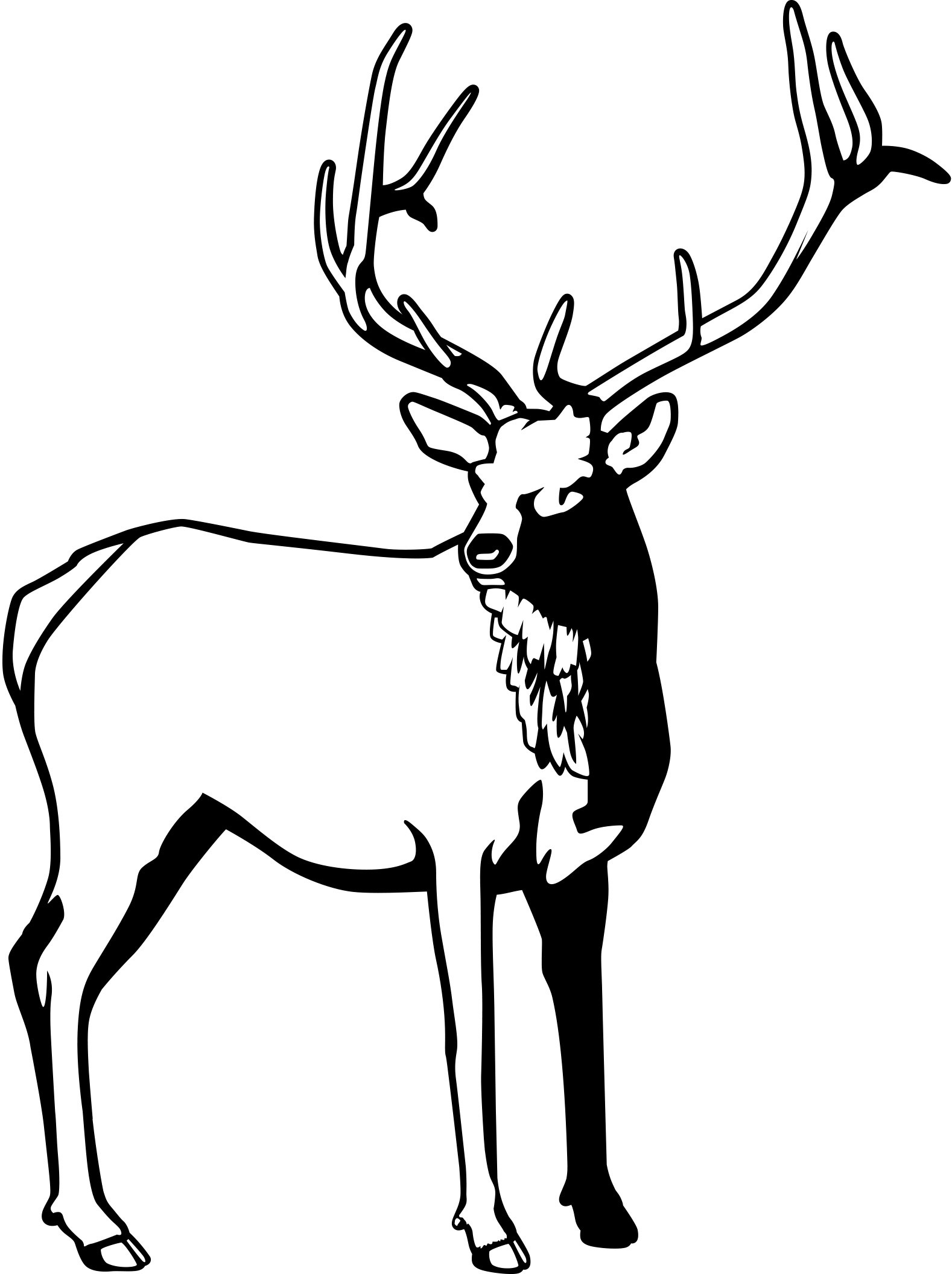 1578x2111 Collection Elk Head Coloring Pages Pictures