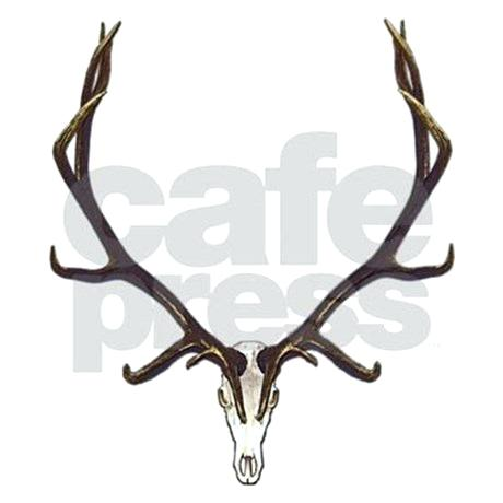 460x460 Elk Skull Cow Stock