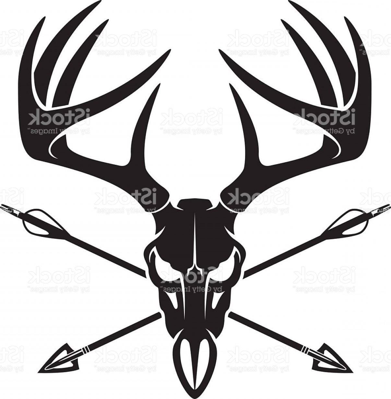 1206x1228 Whitetail Deer Buck Skull With Crossing Hunting Arrows Gm Lazttweet