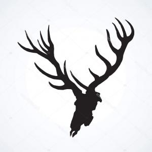 300x300 Best Top Deer Skull Clip Art Cmsea Elk Head Vector Design Library