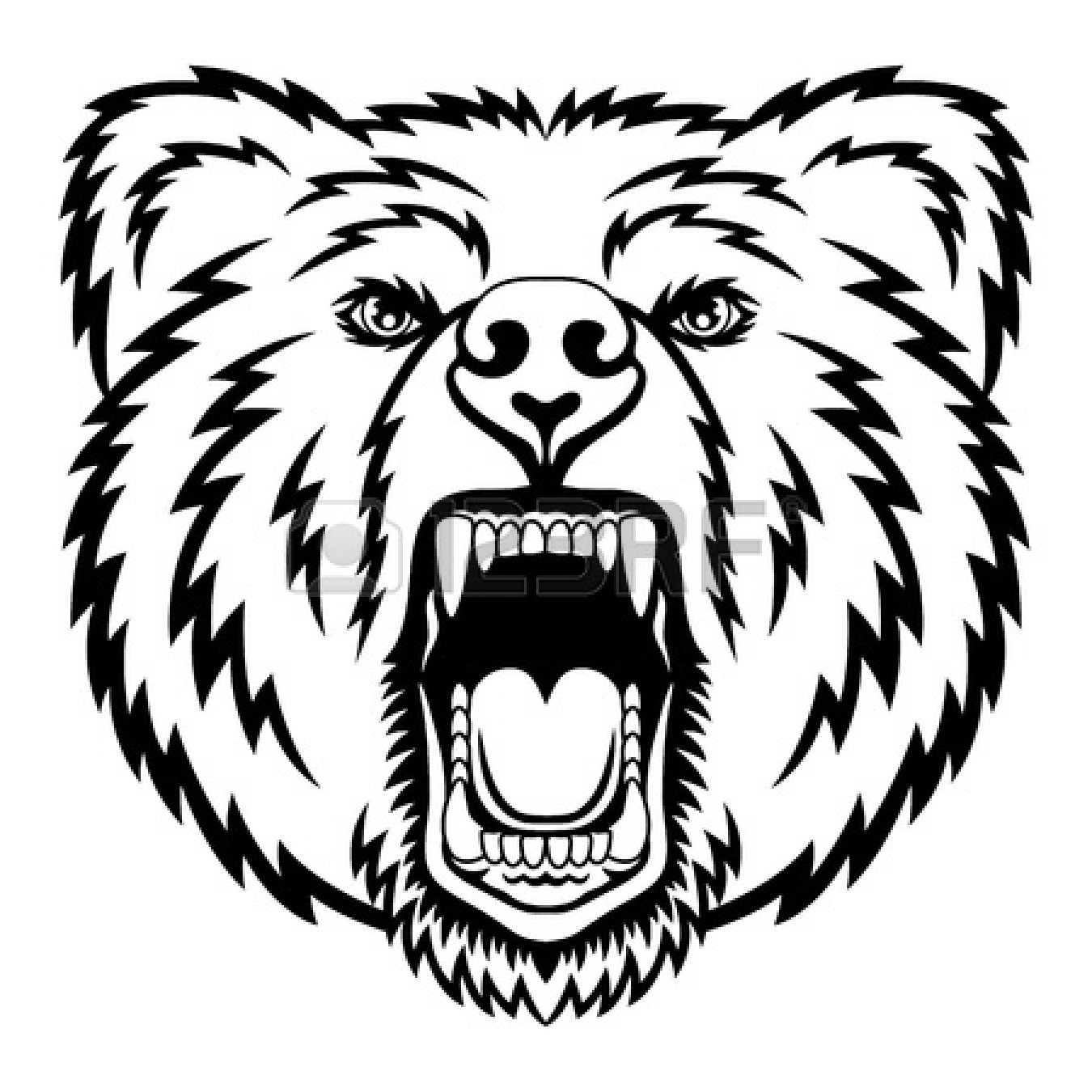 1350x1350 Bear Drawing Face For Free Download