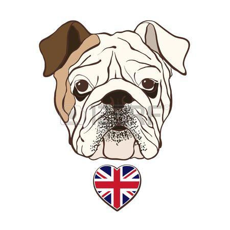 450x450 stock vector bulldog english bulldog pictures, bulldog drawing