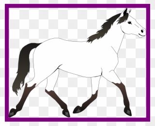 320x260 Drawing Clipart Horse Drawing