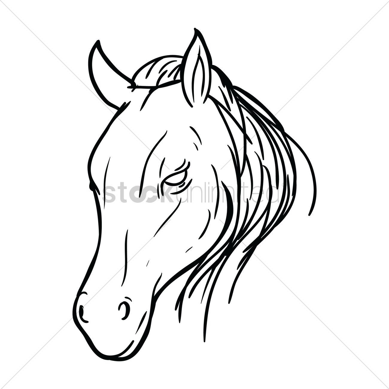 1300x1300 Free Horse Face Vector Image