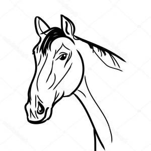 300x300 Horse Head Pencil Sketch Strokes Portrait Gm Lazttweet