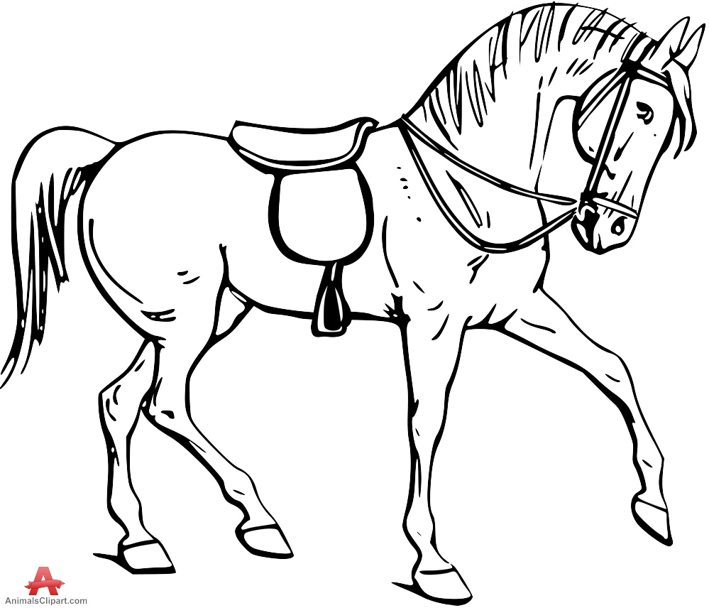 999x856 Stallion Drawing Free Download